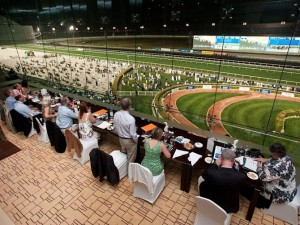 Meydan racetrack, from the stands...