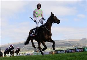 2015 Cheltenham Festival Day 1 Preview, Tips