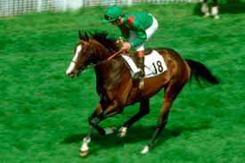 The Mighty Shergar