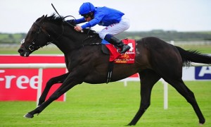 Jack Hobbs wins Irish Derby