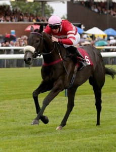 King's Stand Stakes Preview Tips