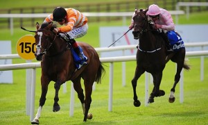 Curragh Glory for Covert Love