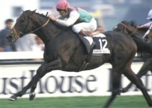 The Stunning Dancing Brave