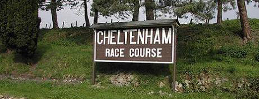 Six Trainers and the Cheltenham Open Meeting