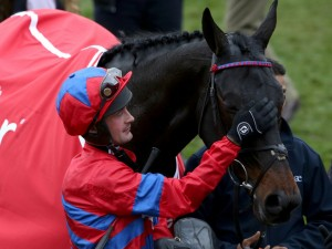 Nico with Sprinter Sacre at Cheltenham
