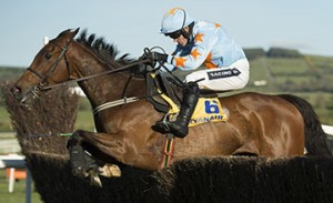 Un De Sceaux misses Tingle Creek