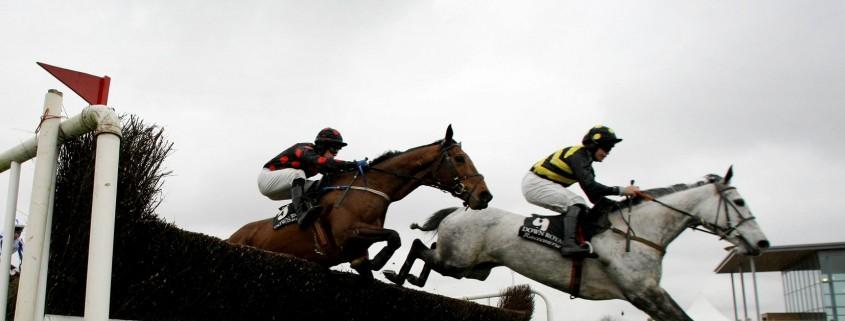 Down Royal is Ireland's stiffest track, according to faller statistics