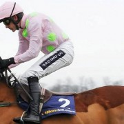 Champion Hurdle 2016 Preview Trends Tips