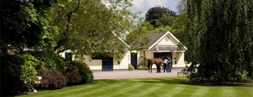 Coolmore take a Walk In The Park