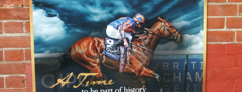Newmarket Racecourses 350th Anniversary