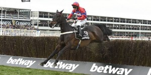 Sprinter Sacre has been retired due to a tendon injury