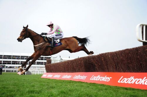 Vautour Flying High