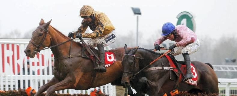 Yorkhill the value in the Supreme? Preview, trends, tips