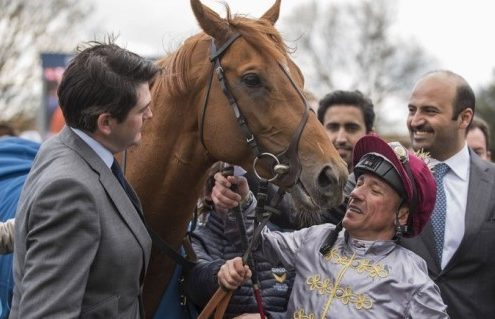 Palmer and Galileo Gold