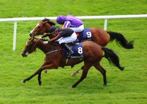 Jet Setting goes for Coronation Stakes glory