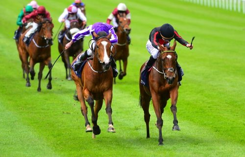 Jet Setting beats Minding, the pair ten clear