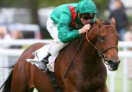 Zarak: unbeaten son of Dubawi, out of Zarkava