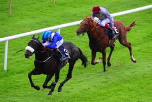 Awtaad bids for Royal Ascot glory in St James's Palace Stakes