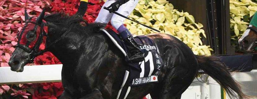 A Shin Hikari bids for Royal Ascot Glory in Prince Of Wales's Stakes