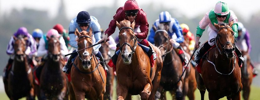 Can Wings Of Desire win the Investec Derby?
