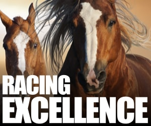 Racing Excellence