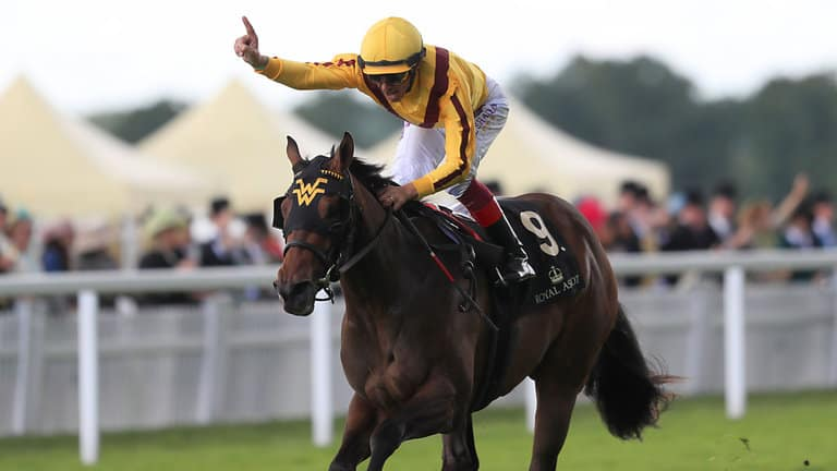 deauville horse racing tips