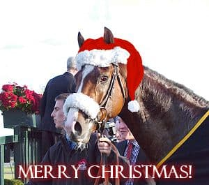 Christmas Horse Racing.Christmas Horse Horse Racing Race Cards Form Tools And Tips