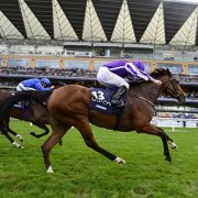 ASCOT 15-10-2016. The Queen Elizabeth Stakes. MINDING and Ryan Moore wins for trainer Aidan O'Brien from RIBCHESTER. Photo HEALY RACING.