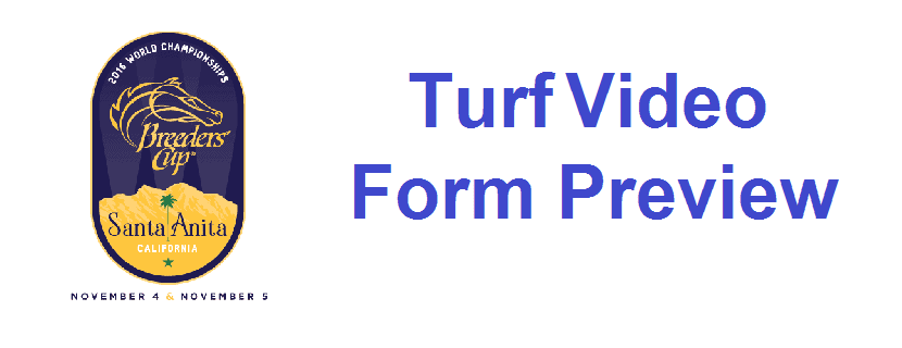 Breeders' Cup Turf 2016 Video Form Preview