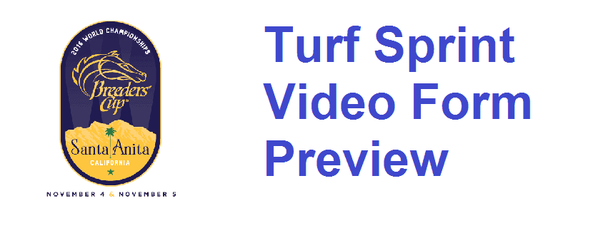 Breeders' Cup Turf Sprint Video Form Guide