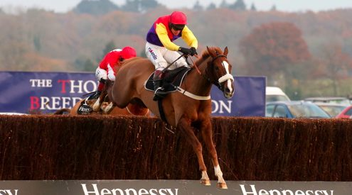 Native River scores Hennessy glory