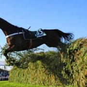 A horse, without rider, enjoys the Aintree jumping challenge. Photo: Pat Healy