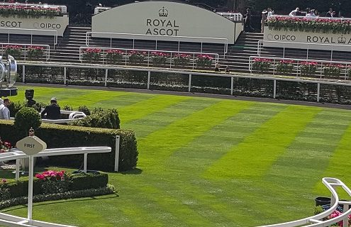 Royal Ascot without the crowds