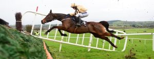 You know how this ends... PUNCHESTOWN 18-11-2017. INVITATION ONLY gives Ruby Walsh no chance of staying in the saddle with this mistake at the 5th fence. Both ok afterwards. Photo Healy Racing / Racingfotos.com