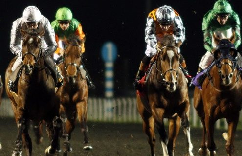 RUSPER (3rd right, Dougie Costello) beats SOD'S LAW (left) in The Matchbook VIP Novice Stakes Div1 Kempton 13 Dec 2017 - Pic Steven Cargill / Racingfotos.com