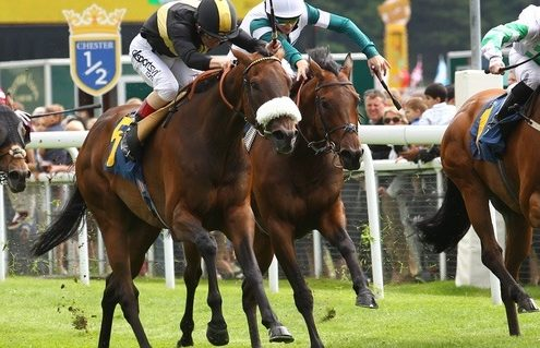 Front runners are strongly favoured over Chester's five furlong course, amongst others Pic Steve Davies/ Racingfotos.com
