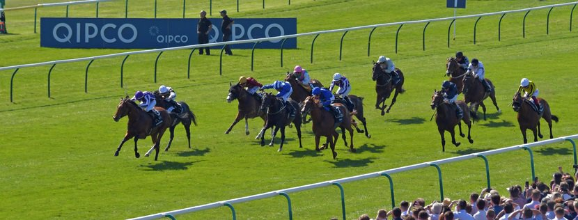 "SAXON WARRIOR wins Qipco 2000 Guineas at Newmarket in May, before the bugs arrived. THIS IMAGE IS SOURCED FROM ""RACINGFOTOS.COM"""