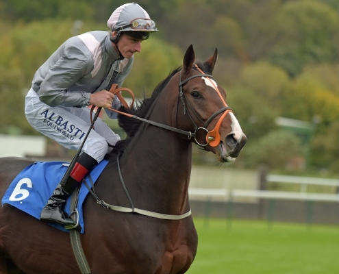 NELSON RIVER at Nottingham 11-10-17. Jockey Adam Kirby took five furlongs to pull up the horse, hinting at his aptitude for the winter game. Image credit: RACINGFOTOS.COM