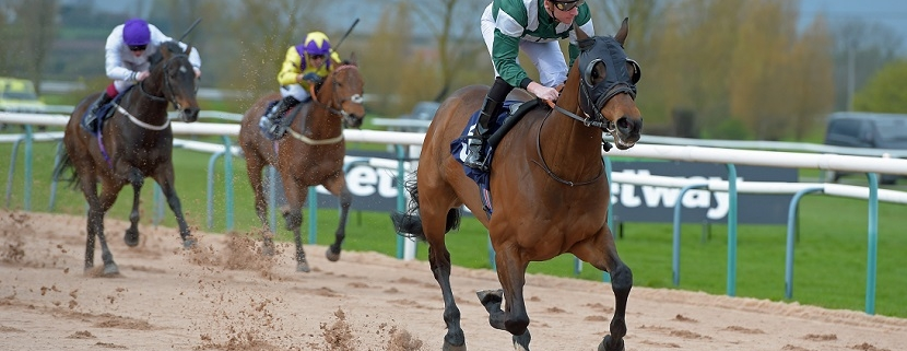 "HAMMER GUN first, the rest nowhere, on the Southwell fibresand. THIS IMAGE IS SOURCED FROM ""RACINGFOTOS.COM"""
