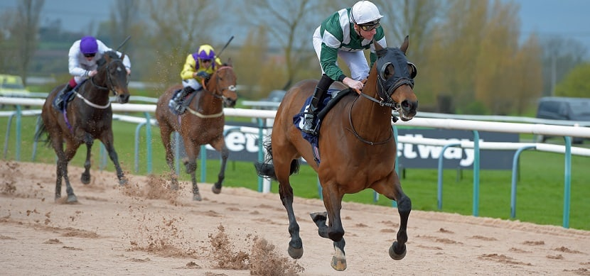 """HAMMER GUN first, the rest nowhere, on the Southwell fibresand. THIS IMAGE IS SOURCED FROM """"RACINGFOTOS.COM"""""""