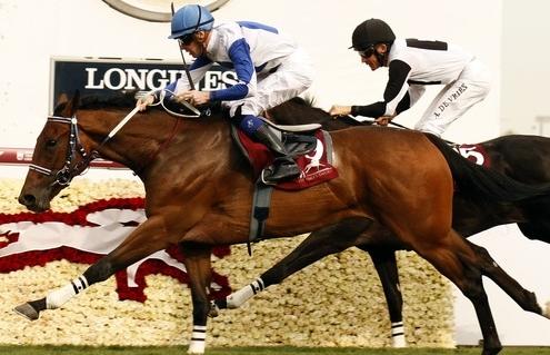 OPERA BARON (JP Guillambert) wins The Al Biddah Mile Al Rayyan Doha Qatar 27 Feb 2016. Guillambert was second in the race this year - Pic Steven Cargill / Racingfotos.com