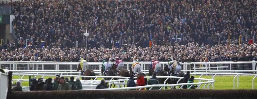 A packed Dawn Run stand watch the action in the JLT Novices' Chase at Cheltenham. 14/3/2019 Pic Steve Davies/Racingfotos.com