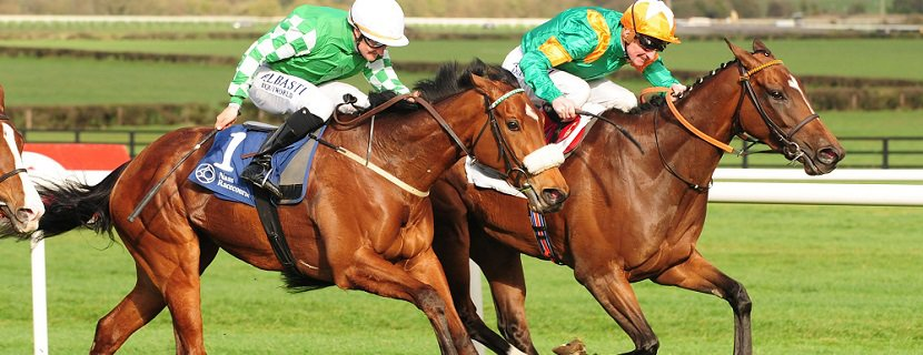 24-3-19 NAAS NORMANDEL and Kevin Manning (far) beat Yulong Gold Fairy (near) to win The Lodge Park Stud Irish EBF Park Express Stakes. Healy Racing Photo. / racingfotos.com