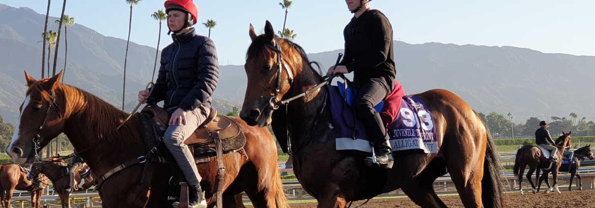 Joseph O'Brien walks back in with his string after work on the Santa Anita, Ca., track 30/10/19. Image: Matt Bisogno