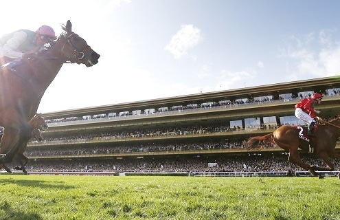 Racing returns to Paris Longchamp this morning after the coronavirus hiatus. Photo GALOPPFOTO/Racingfotos.com