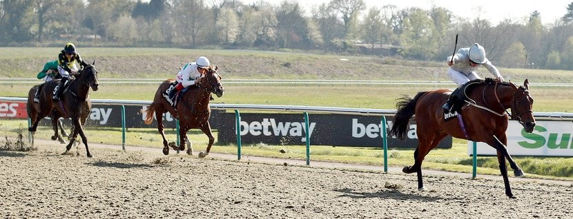 MATTERHORN (Joe Fanning) beats WISSAHICKON (left) in The Betway Easter Classic All-Weather Middle Distance Championships Stakes Lingfield 19 Apr 2019 - Pic Steven Cargill / Racingfotos.com