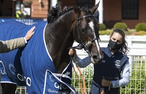 Face-masked trainer Andrew Balding greets Kameko (Oisin Murphy) in the winners enclosure after the Qipco 2000 Guineas Newmarket 6.6.20 Pic: Edward Whitaker / Pool Via Racingfotos.com