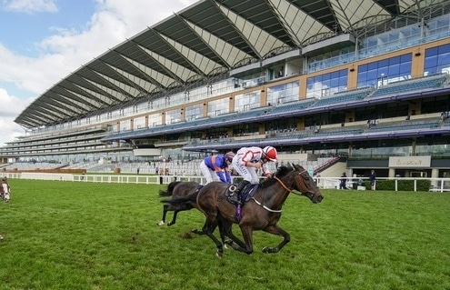 ASCOT, ENGLAND - JUNE 20: Tom Marquand riding Who Dares Wins celebrates after winning The Queen Alexandra Stakes on Day Five of Royal Ascot at Ascot Racecourse on June 20, 2020 in Ascot, England. Photo Alan Crowhurst / Pool Via Racingfotos.com