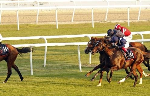 SIMSIR (Lee Newman) beats GLOBAL GIANT (right) and SOVEREIGN (hidden) in The Bahrain International Trophy Rashid Equestrian & Horseracing Club, Bahrain, 20 Nov 2020 - Pic Steven Cargill / Racingfotos.com